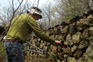 Volunteer Day, October 24 – Blue Ridge Regional Park
