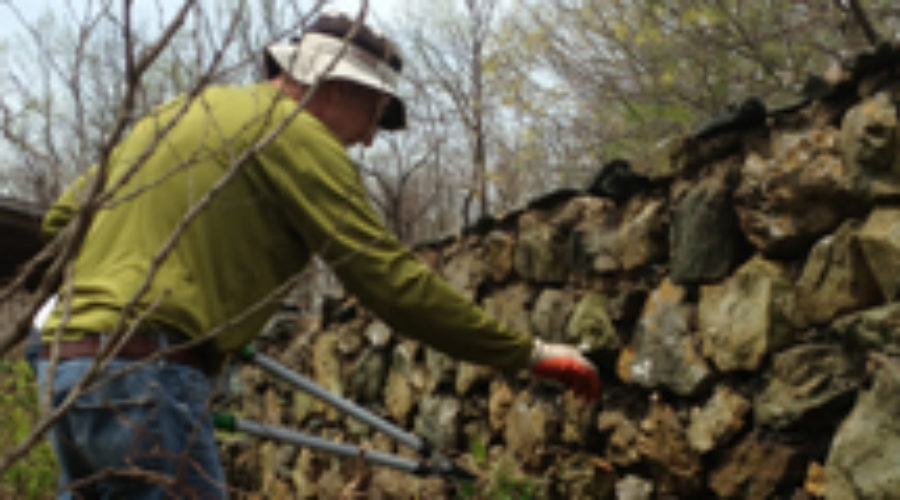 Volunteer Day, October 24 – Blue Ridge Regional Park