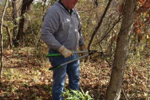 Volunteer Day: Blue Ridge Regional Park