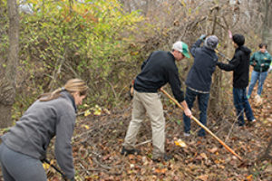 2015 Autumn Stewardship Volunteer Day